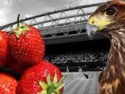 Сегодня стартует знаменитый Уимблдонский турнир