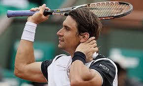 Давид Феррер проиграл в первом круге на турнире в Хертогенбосе