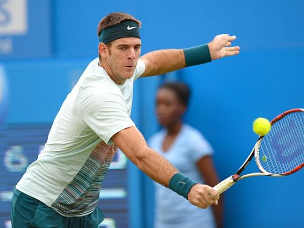 Хуан Мартин дель Потро  на турнире ATP-тура