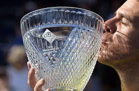 Хуан Мартин дель Потро завоевал очередной титул на турнире City Open в Вашингтоне
