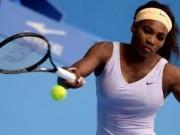 Серена Уильямс в финале турнира в Пекине поборется с Еленой Янкович
