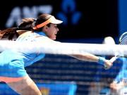 Определились все участники 1/4 финала Australian Open 2014