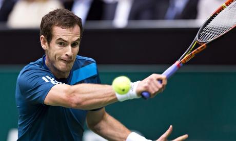Энди Маррей одержал победу на турнире ATP в Голландии