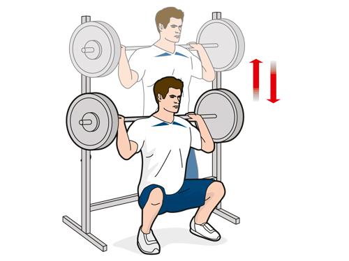Упражнение A1: приседания со штангой