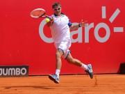 Томми Робредо обыграл Фоньини в 1/2 финала в Буэнос-Айресе