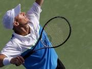 Габашвили и Давыденко выиграли на турнире в Индиан-Уэллсе