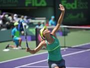 Майами Мастерс — американский турнир на восточном побережье
